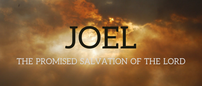 Vindication on the Day of the Lord - Joel 3 (Audio)